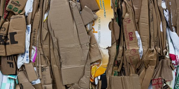 Is a Sustainable Packaging Revolution Upon Us?